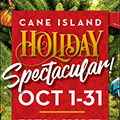 Showcase of Uniquely Themed Christmas Trees at Cane Island